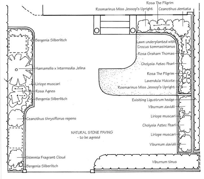 front garden amiuddin