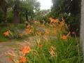 052_labtrip6_ Jul2011