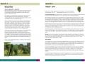 bolney management plan extract4
