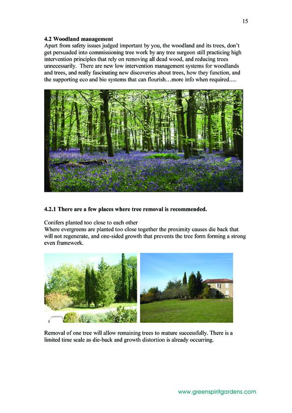 15  LABRANON_report 200805 copy