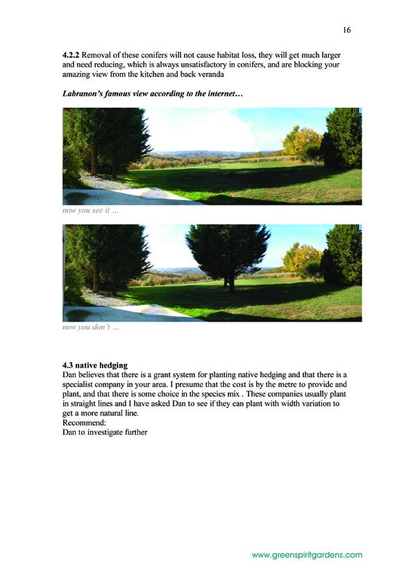 16  LABRANON_report 200805 copy