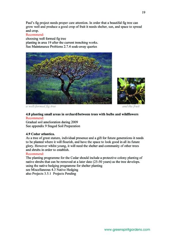 19  LABRANON_report 200805 copy